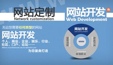 定制型网站建设的服务流程