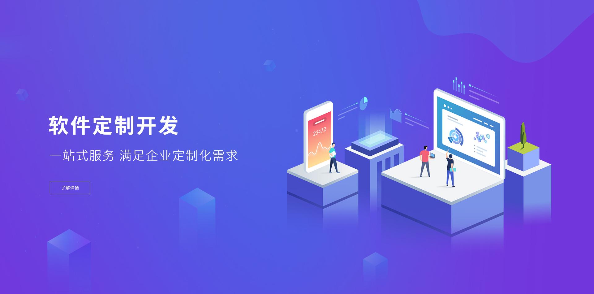 济南建站服务之软件定制
